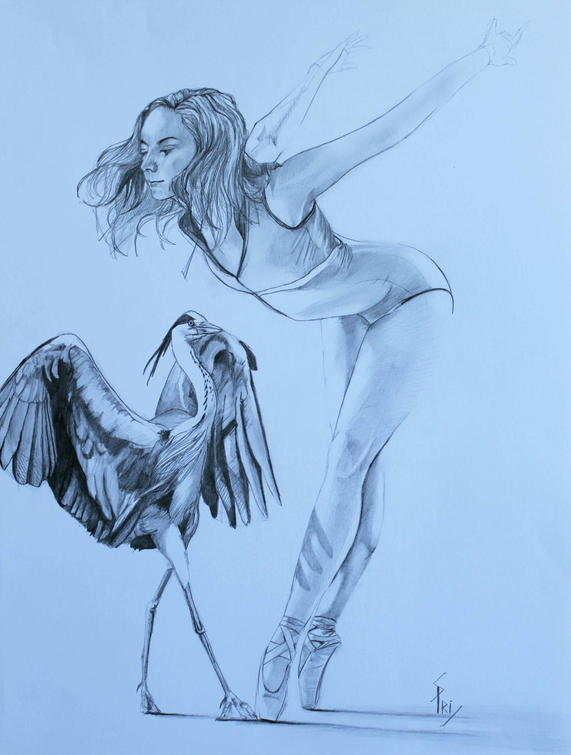 dessin par Priscilla Seiller : l'oiseau et la danseuse