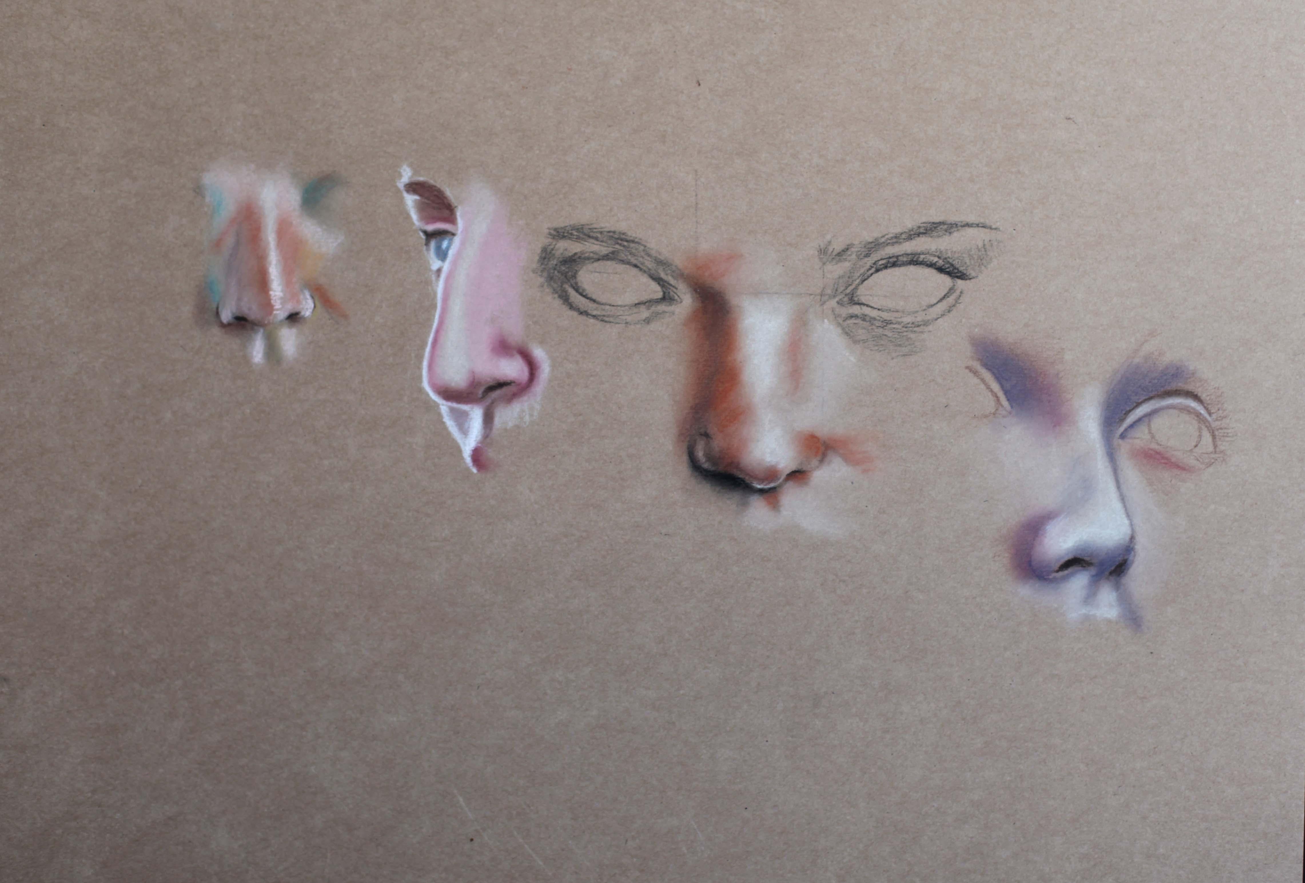 Dessin de nez par Priscilla Seiller